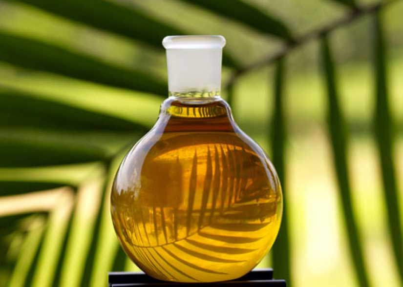 Palm oil prices seen firming as rising consumption cuts inventories