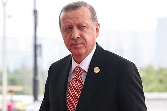 Erdogan to visit Pakistan next month: Turk envoy